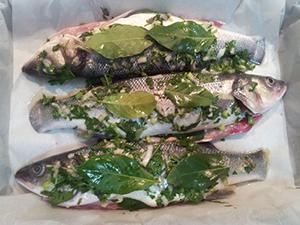 рецепт сибаса в духовке