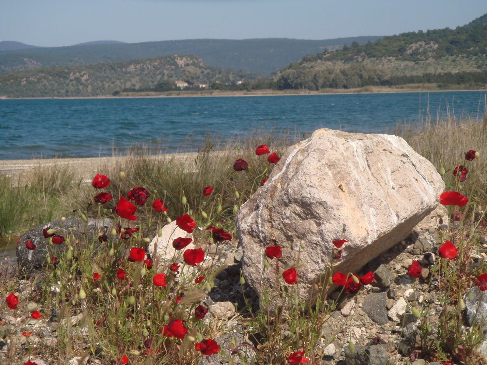 погода в греции апрель май