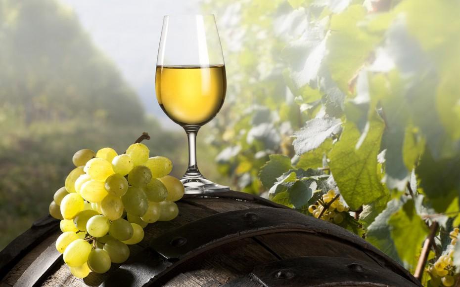 вина греции