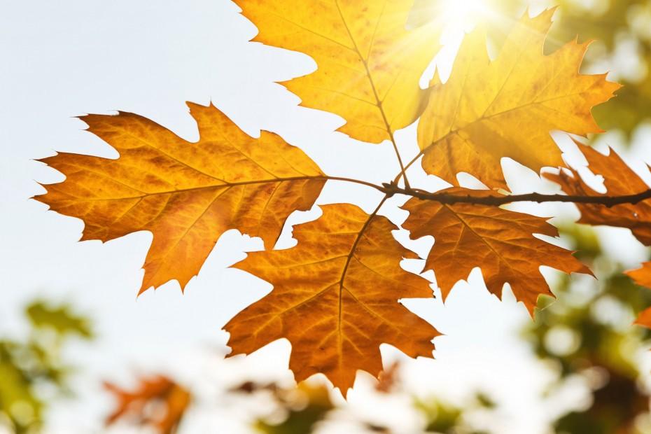 температура воздуха в греции в октябре