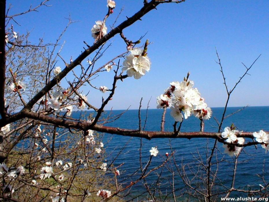 весна в ираклионе