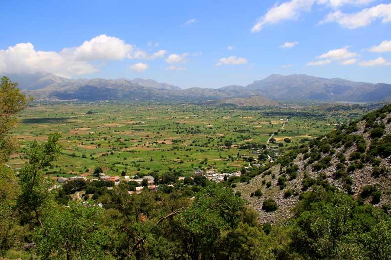 Крит Лассити