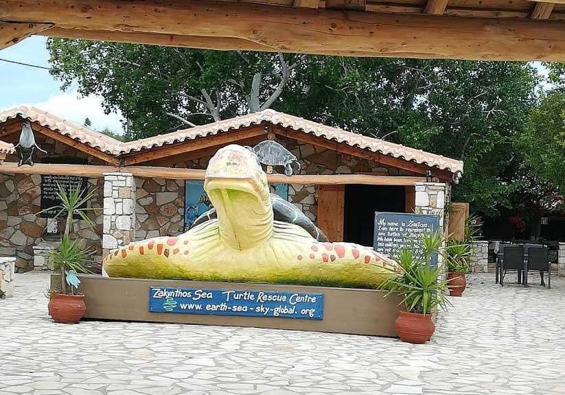 Черепахи Закинтоса